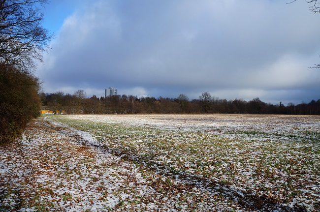 Öjendorfer Park Nordfläche