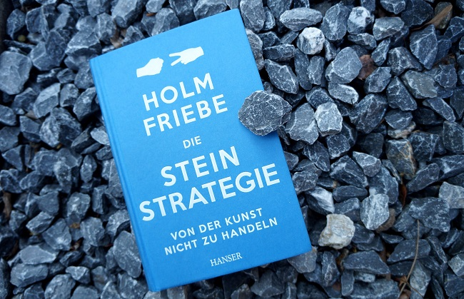 Stein-Strategie Buchtitel