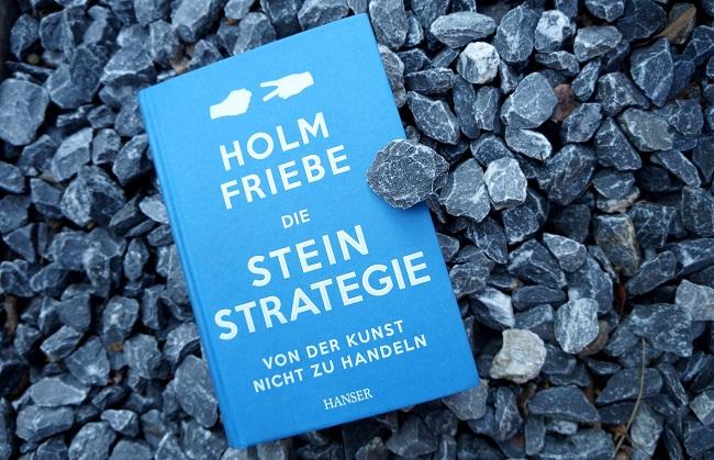 Stein-Strategie Buchtitel